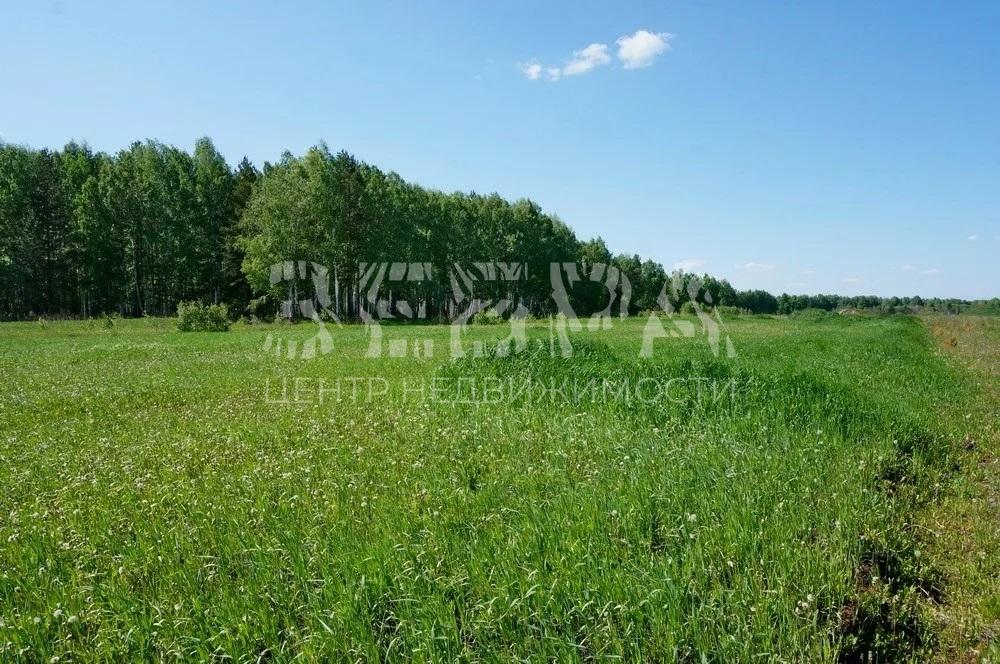 Продается участок в д. Малые Вески (рядом с с. Годуново)